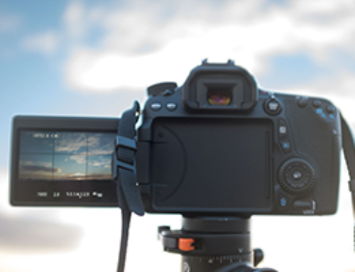 Introduction to SLR Photography