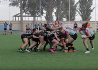 fat rugby 2016